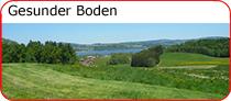 Gesunder Boden bei Schätze aus Österreich