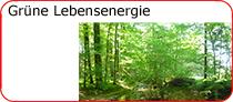 Grüne Lebensenergie bei Schätze aus Österreich