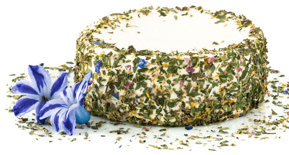 Frischkäse mit Kräuter und Blüten