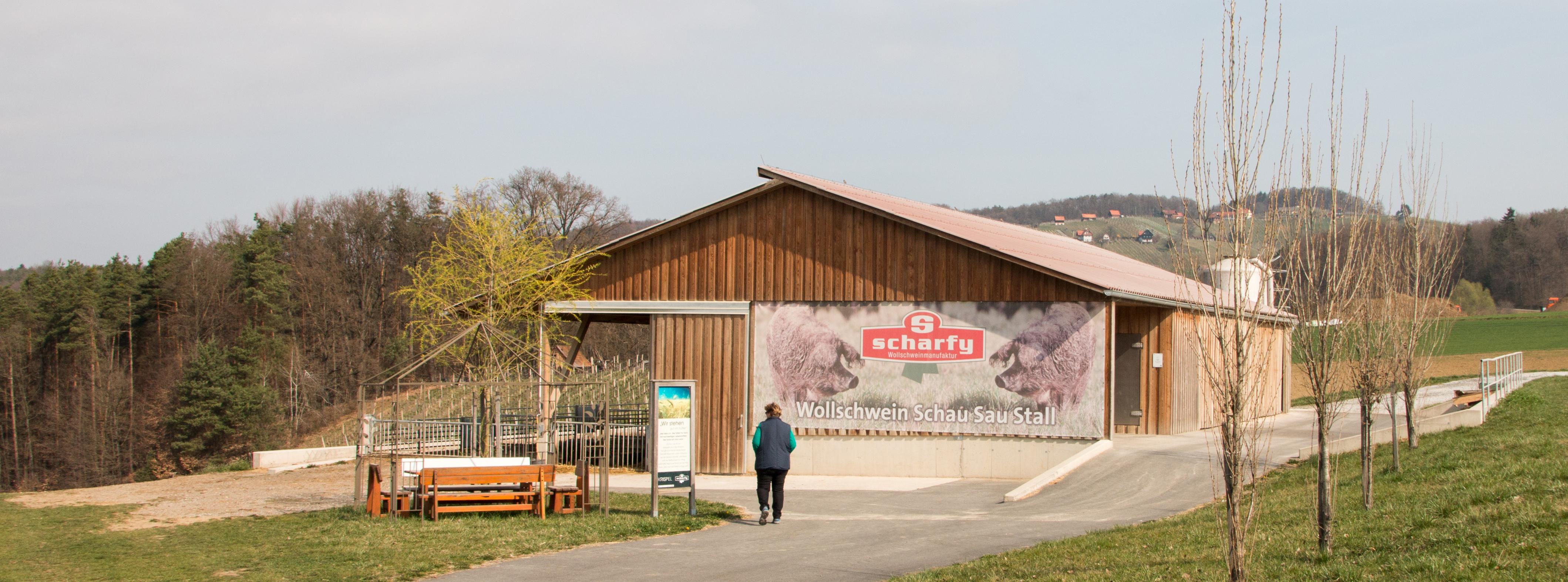 Wollschwein Stall